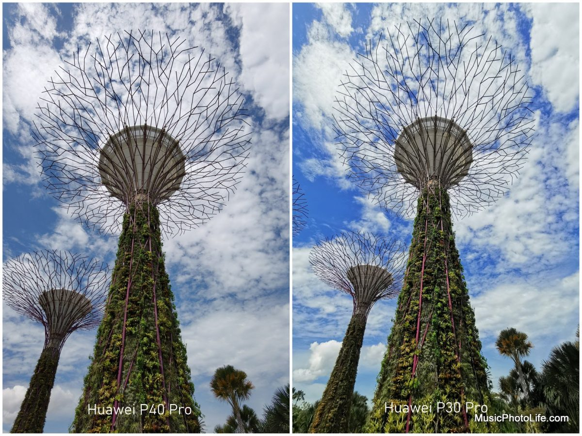 Compare Huawei P40 Pro with P30 Pro at Gardens by the Bay